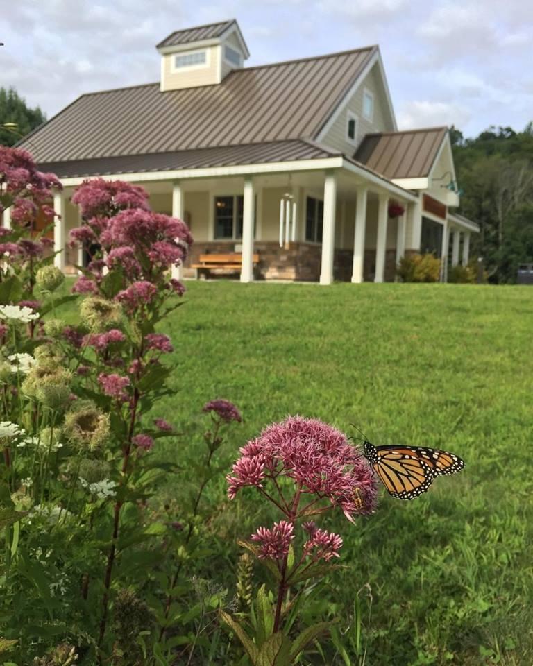 monarchs at the CIC.jpg