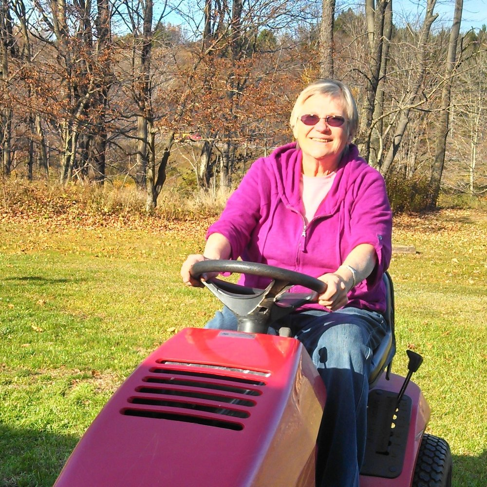 Cyndi LaPierre  has lived in the Mountain Top area of the Catskills since 1970. During this time she has immersed herself in the history and literature of the area, serving on the Board of Directors and now as president of the Mountain Top Historical Society. She has also been involved with the Greene Room Players and is currently on the board at Catskill Center.