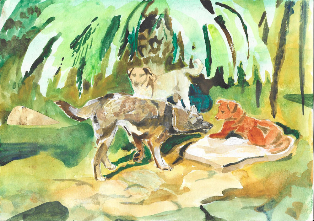 Dogs of the Sinai, 2015, graphite, acrilic and collage on papaer, 9x12%22.jpg