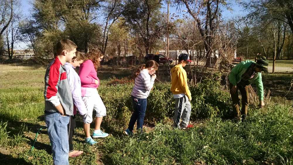 After raking leaves, the group stopped by the LegacyWorks garden for some fresh veggies.