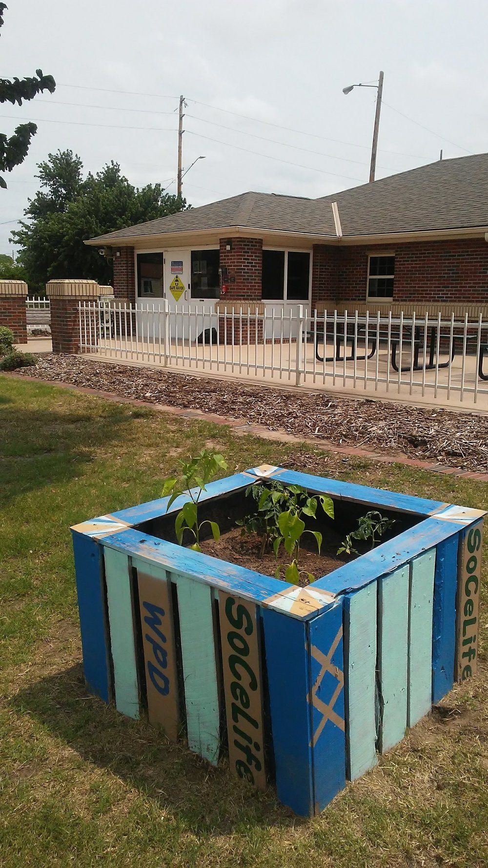 Year 2 for our garden box and the Patrol South Police Station