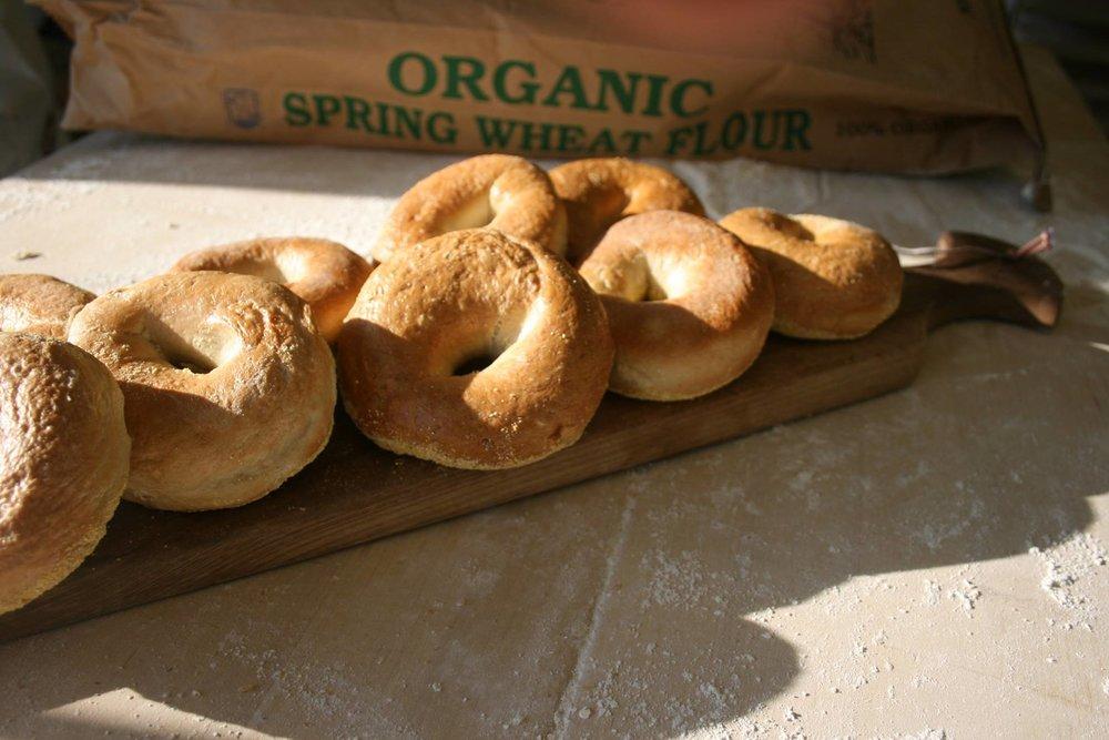 organic bagels.jpg
