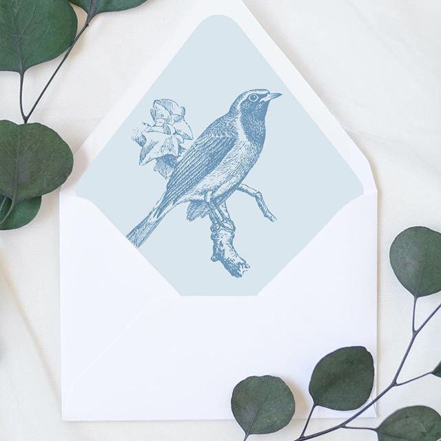 Who else loves vintage bird illustrations? Is it just me? 😂 This little birdie liner is available as an instant download in my Etsy shop!