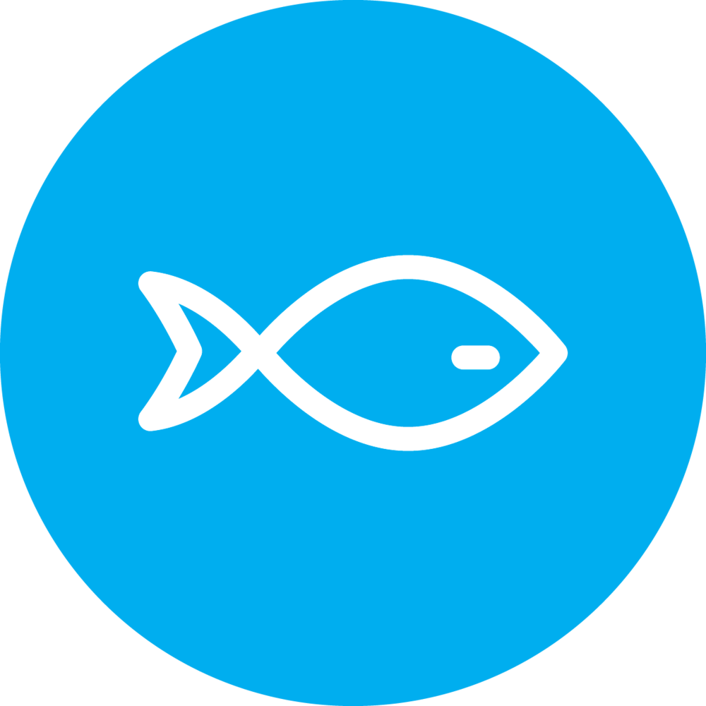Aquaculture Feeds