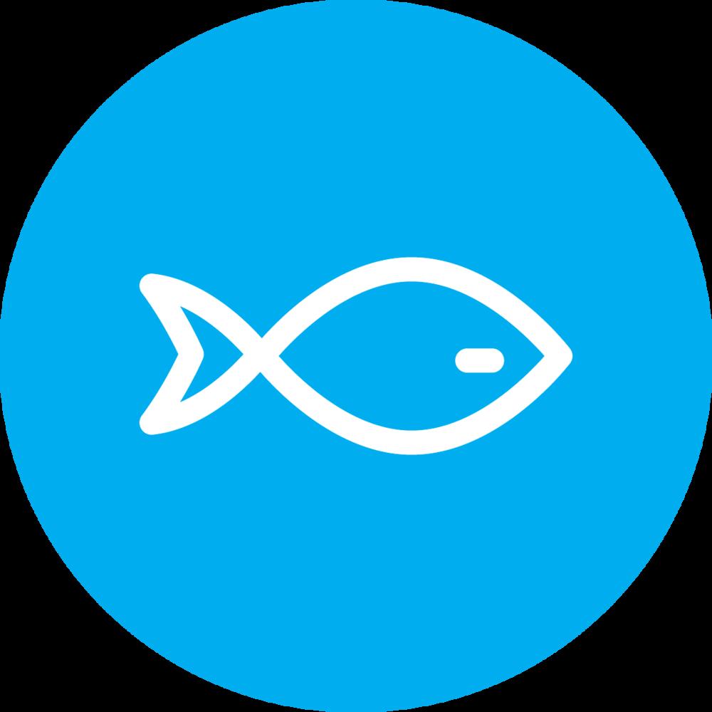 Aquaculture Feeds