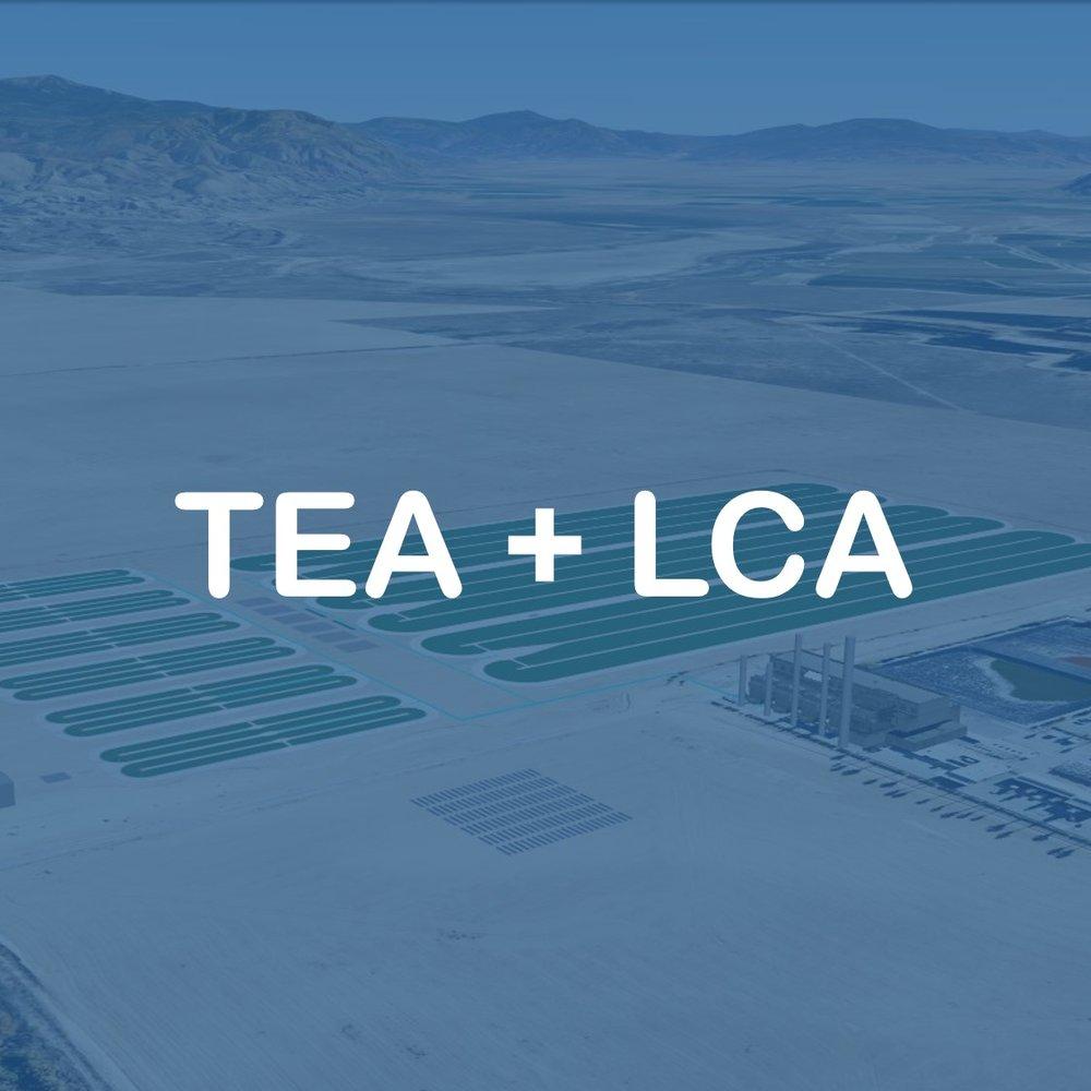 TEA LCA.jpg