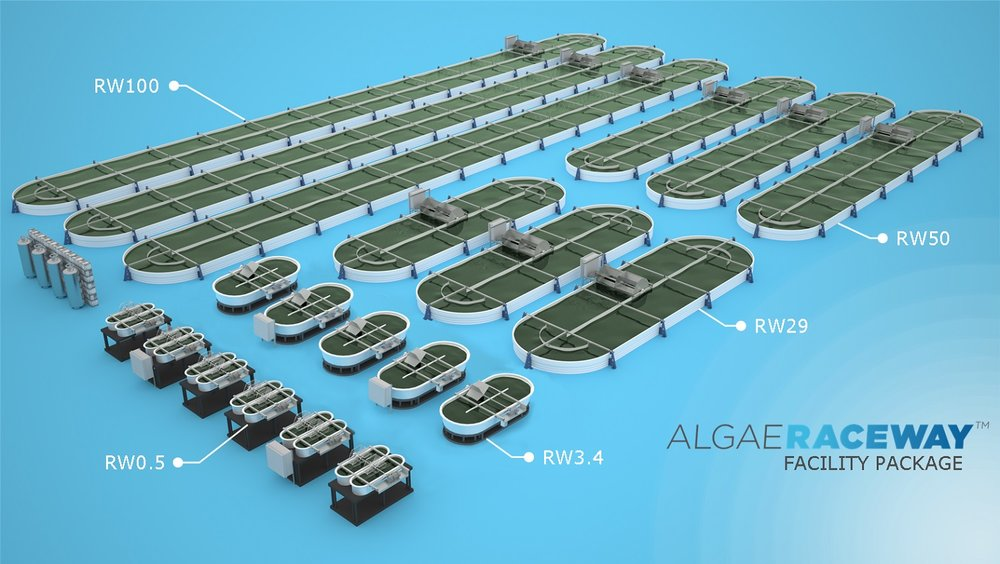 Algae Raceway ponds by MicroBio Engineering