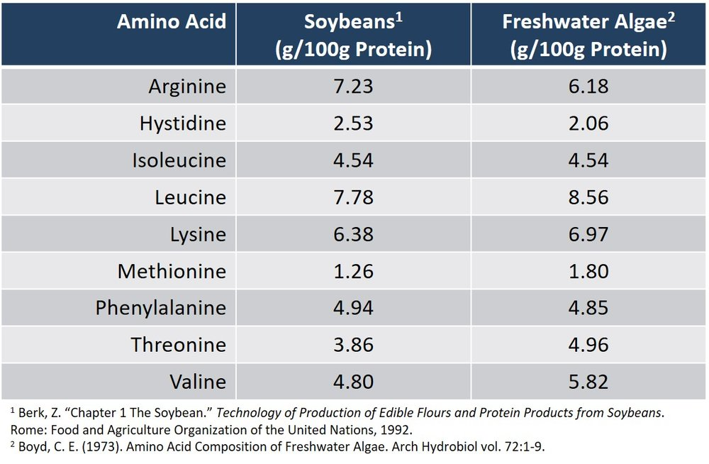 Algae vs Soybeans - Essential Amino Acids Table (1).JPG