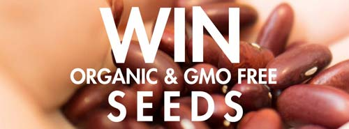 FB_promo_seeds