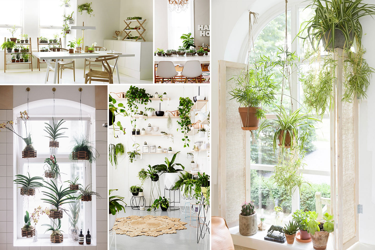 10 Amazing Indoor Garden Ideas To Brighten Your Home