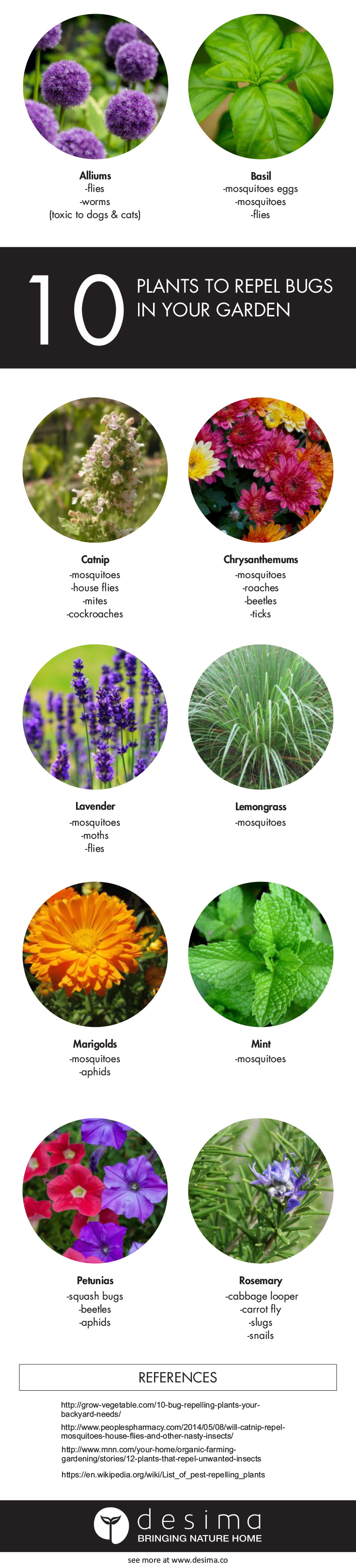 inspiration house plants that repel bugs. Use these 10 plants in your backyard to help prevent unwanted insects  Sign up our newsletter and I will let you know when this article has been updated Plants repel bugs garden desima