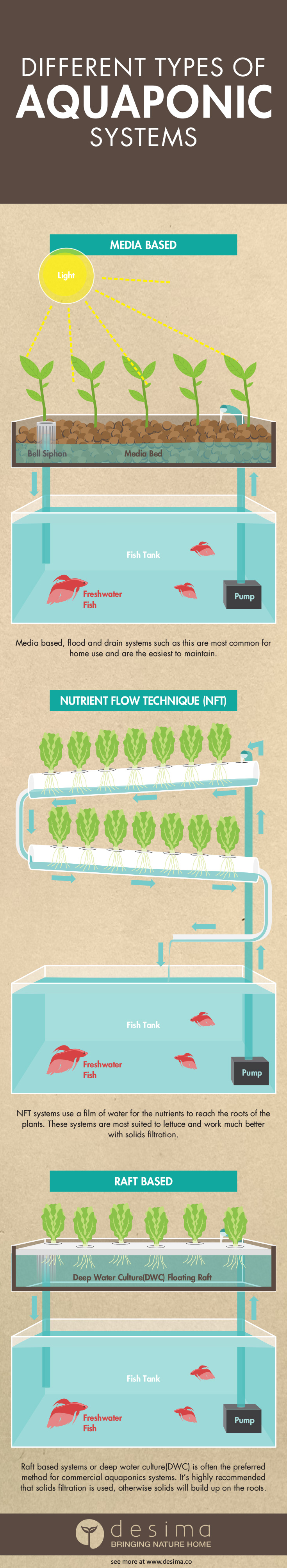Infographic on the different types of aquaponics systems.