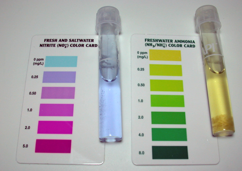 aquaponics water test kit test ph levels fish