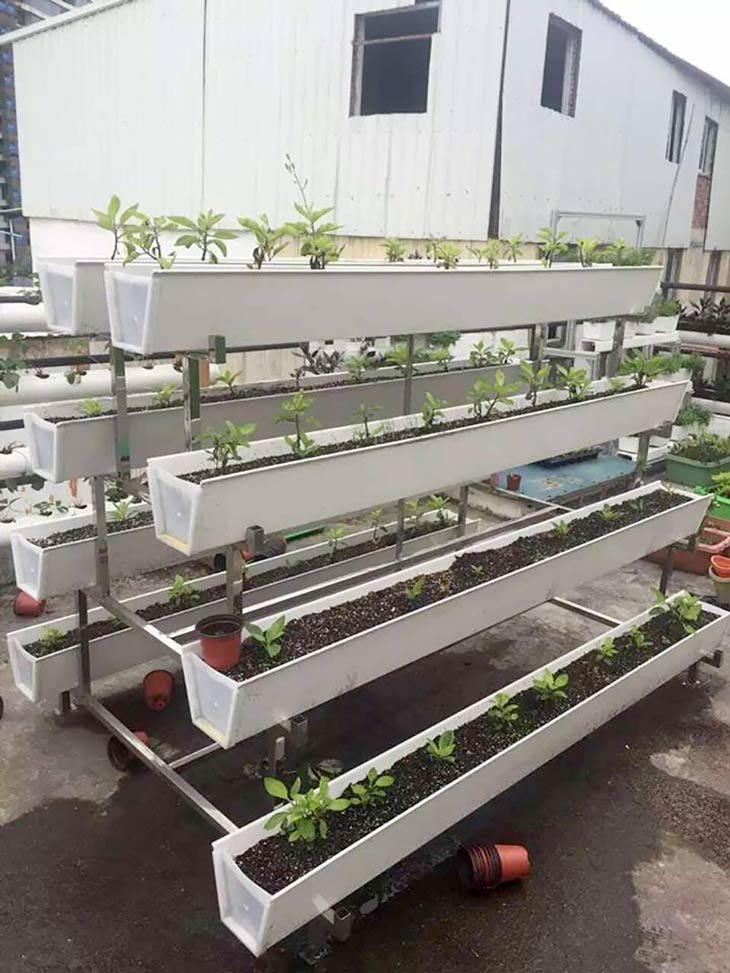 10 awesome diy aquaponic builds to inspire you desima for Aquaponic source