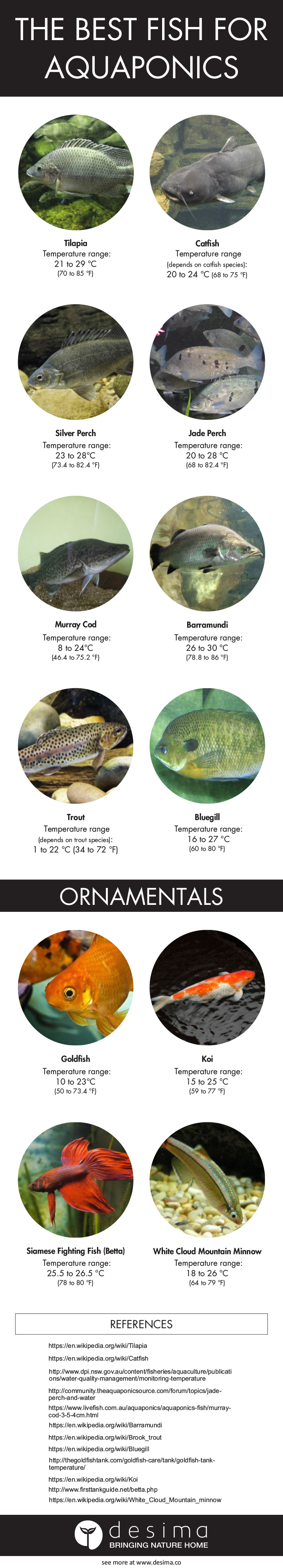 The Best Fish for Aquaponics (Infographic updated in 2017)