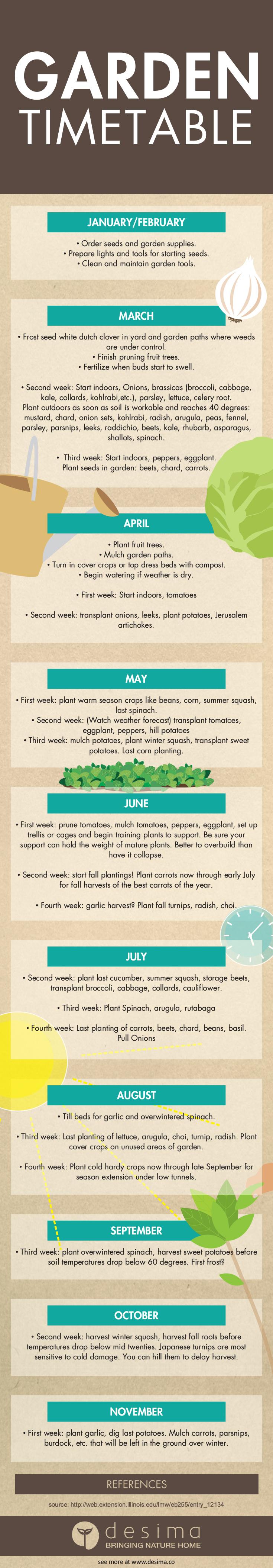 Garden Timetable Infographic