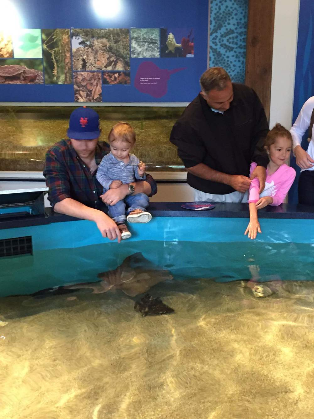 Touch sting rays
