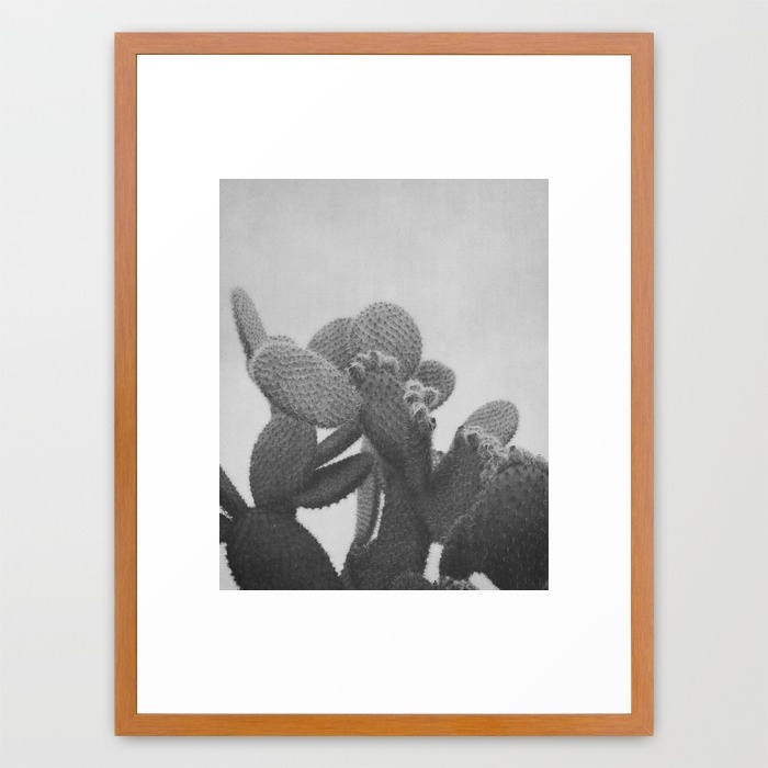 black-and-white-cactus-wa8-framed-prints.jpg