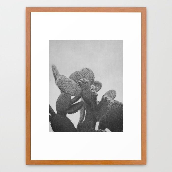black-and-white-cactus-wa8-framed-prints.jpg