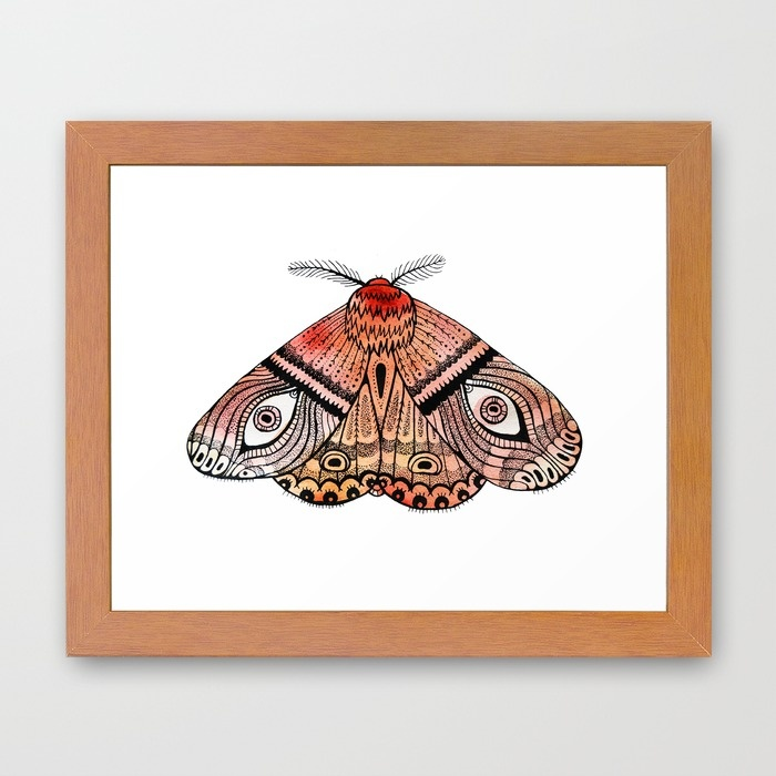 moth-p72-framed-prints.jpg