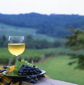 Blue Ridge Wine Excursions, Virginia Wine Tours