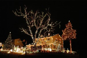 Charlottesville Tacky Light Tours, Richmond Tacky Light Tours
