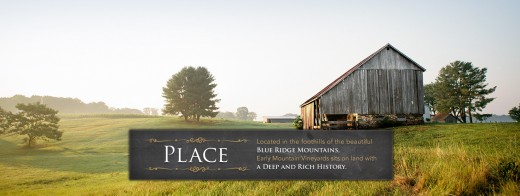 Virginia Wine Tour, Virginia Wine Tours, Early Mountain Vineyards, Charlottesville Wine Tasting