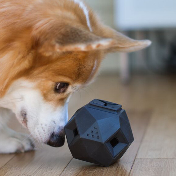 Interactive Modular Dog Toy