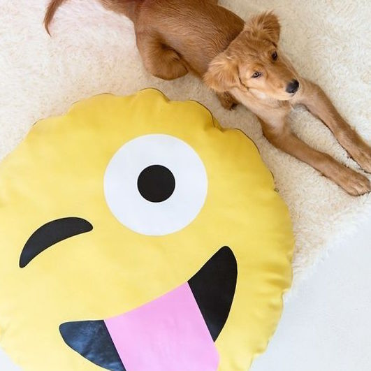 Smiley Face Emoticon Dog Bed DIY