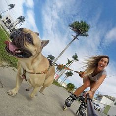 Woman Rollerblading & French Bulldog with GoPro