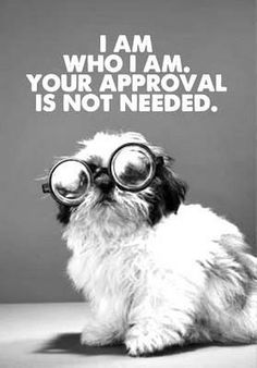I am who I am. Your approval is not needed. - Dog Typography