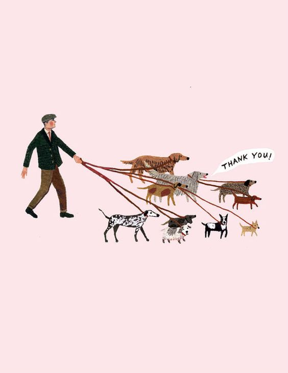 "Dog Walker Illustration - ""Thank you!"""