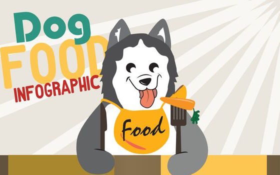 Dog Food Infographic