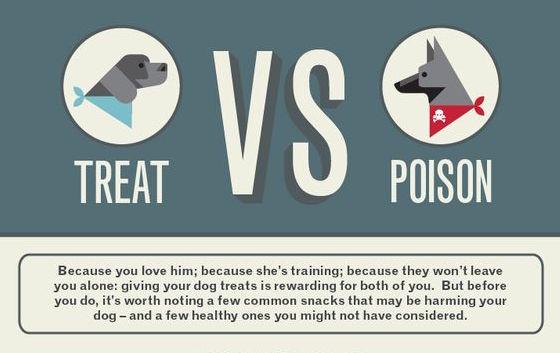 Treat VS Poison Infographic
