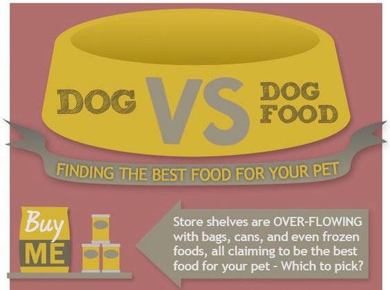 Dog VS Dog Food Infographic