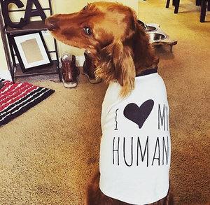 I Love My Human Dog Tee