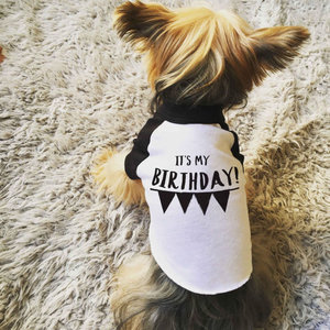 Its My Birthday Dog Tee