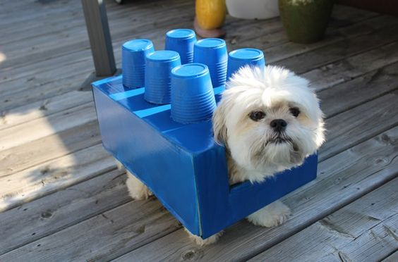 DIY Halloween Costumes for Dogs: Lego Dogo