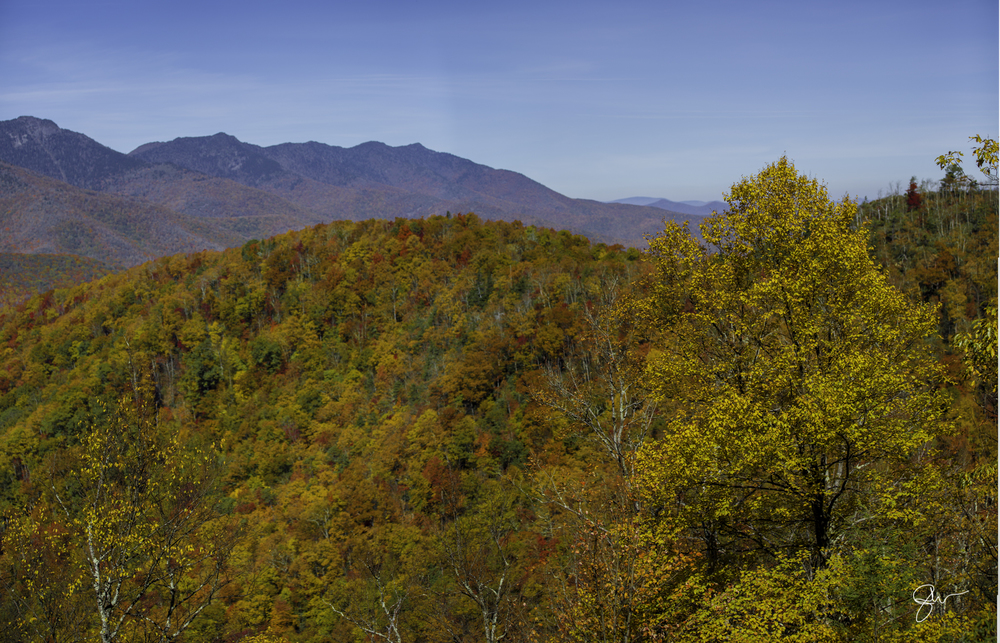 2015 NC Fall Color-25.jpg