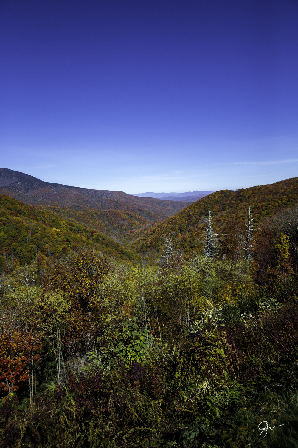 2015 NC Fall Color-28.jpg