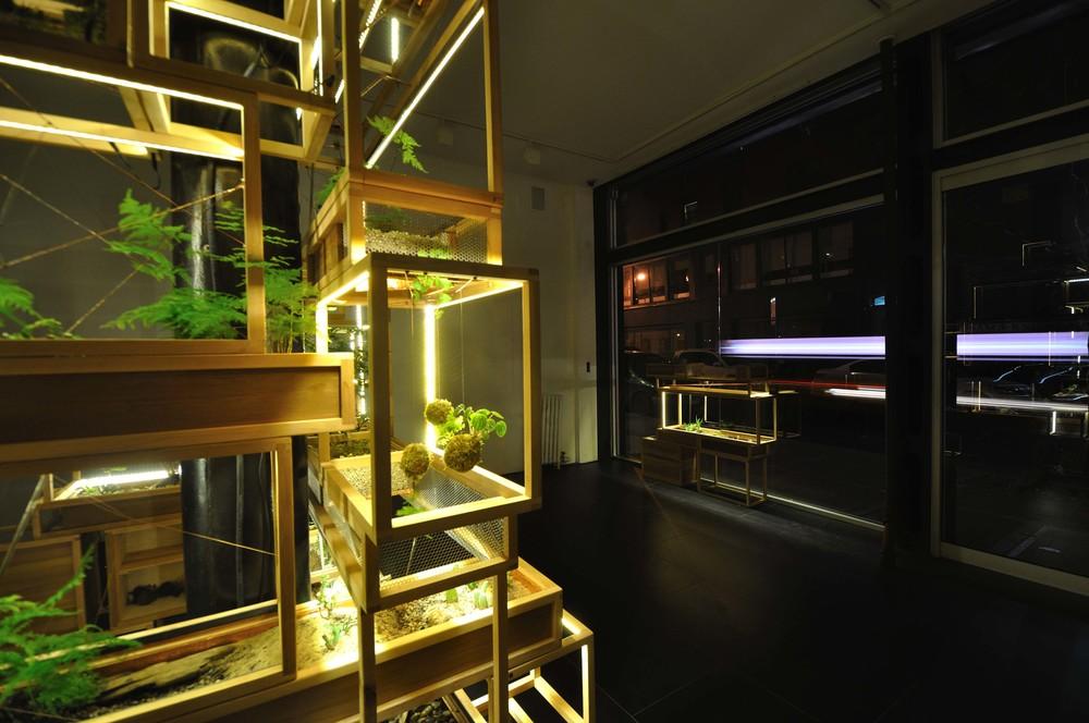 21st Century Terrariums