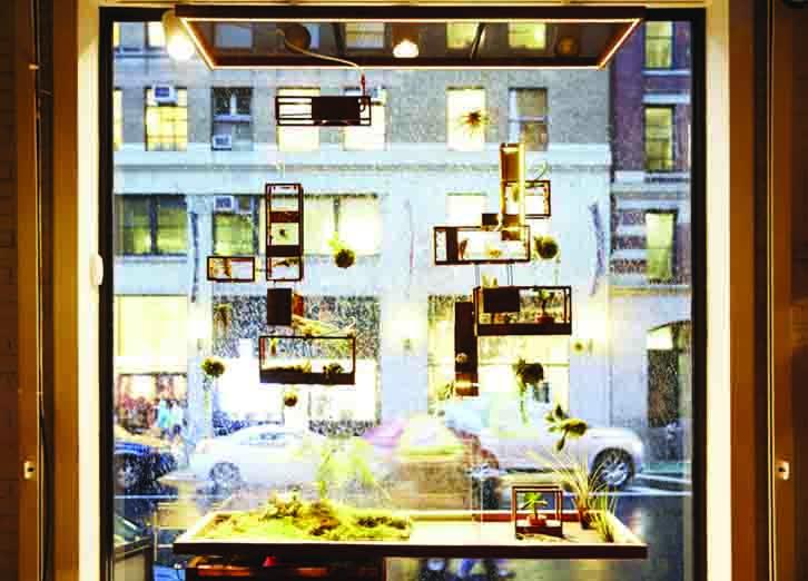 Window AA2.jpg