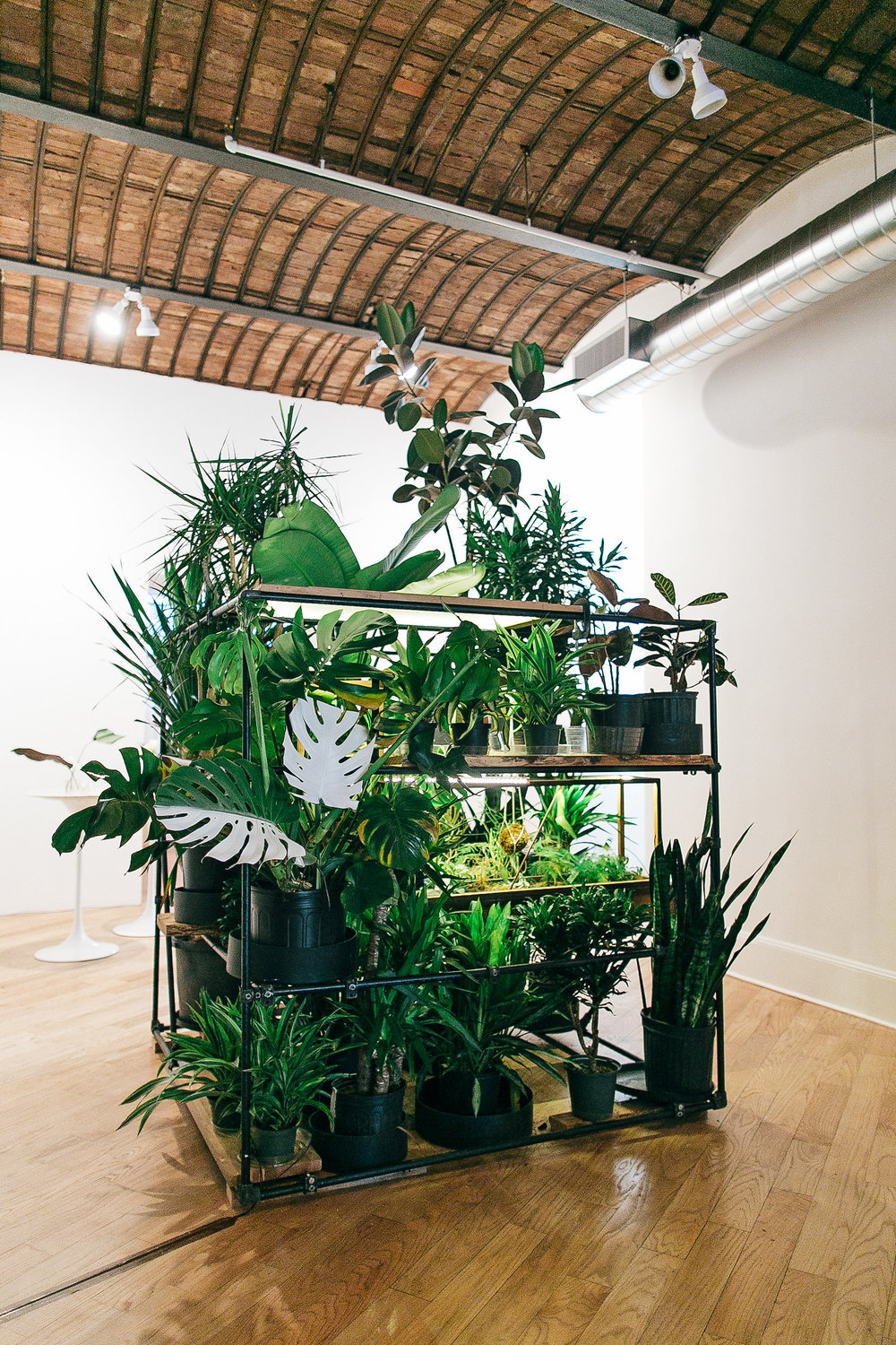 ALC - Jungle Gym Installation - Showroom Debut Event