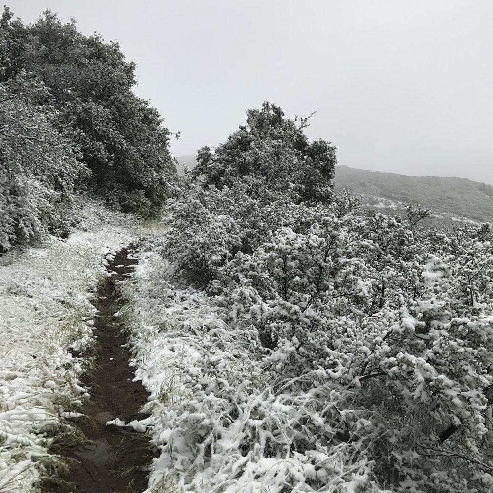 desert-blizzard-pct-2017.JPG