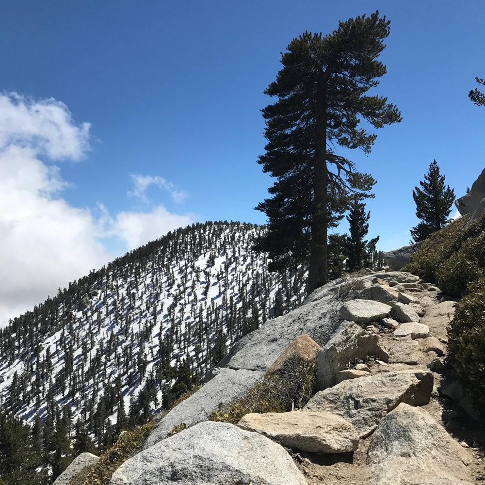 san-jacinto-climb.jpg