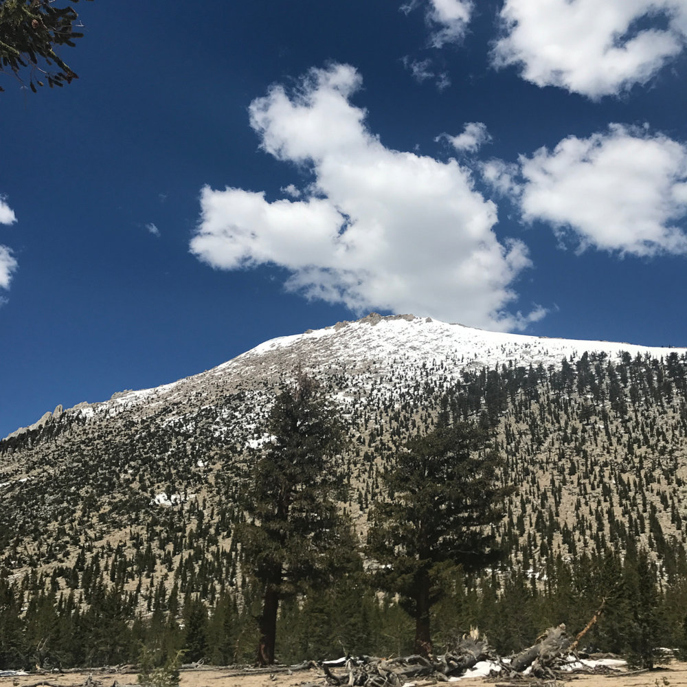 high-sierra-pacific-crest-trail.jpg