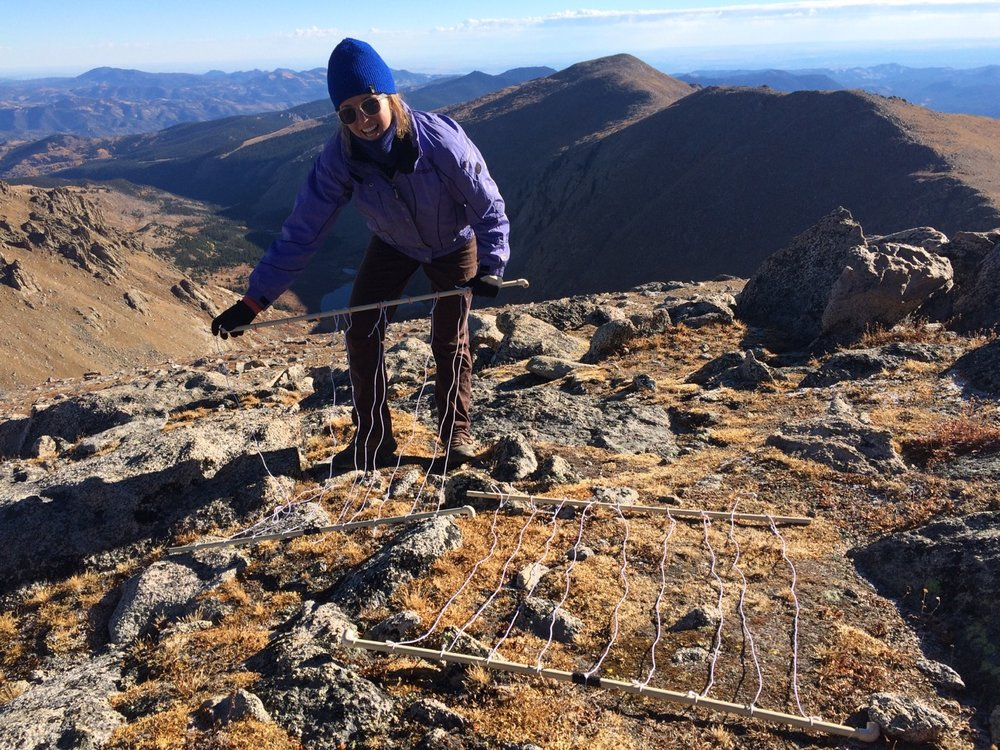 Nathalie's field assistant, Clea Berholet, assembling the surveying grid on Grey's Peak