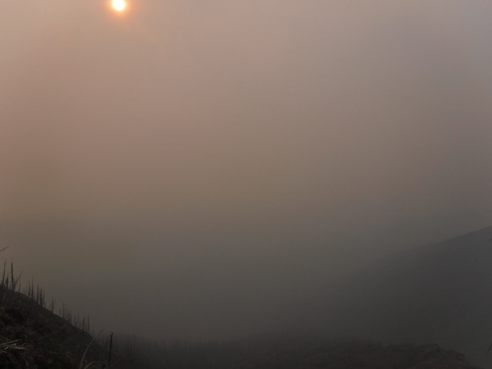 Fire in the alpine at the Bob Marshall Wilderness Compex, MT in 2012