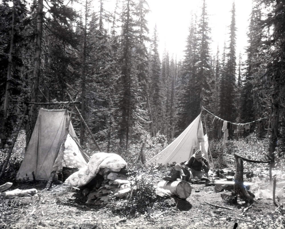 Camp in the woods - it was common to use small trees and logs as tent poles