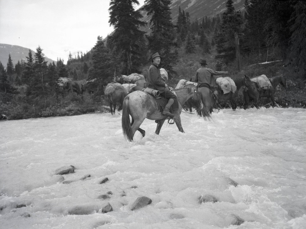 The climbing party fording a river on horses, there were fewer roads and cars were less reliable, so travel by horse was common